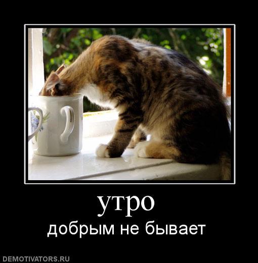 http://svalka.do.am/_sf/0/64758951.jpg